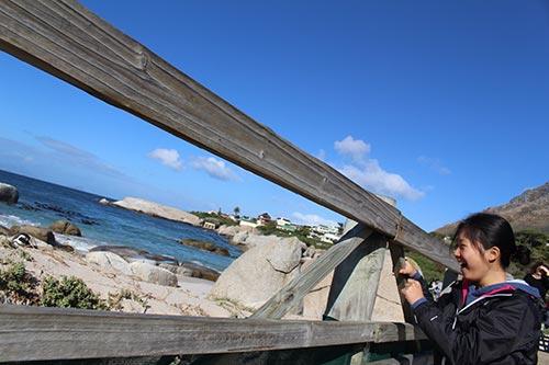 Student Ambassador Yi explores Cape Cod