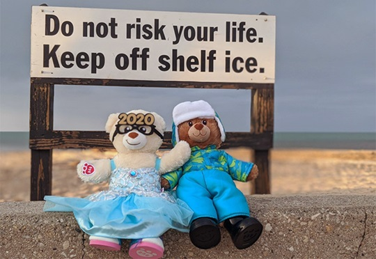 Two stuffed animals on a beach wall