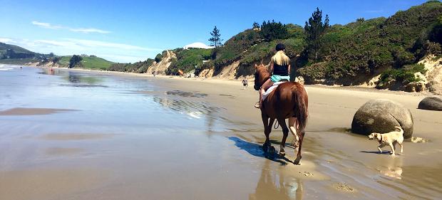 Utvekslingstudent på ridning i New Zealand