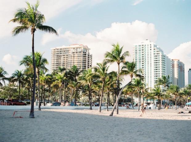 Strand med palmer i Florida