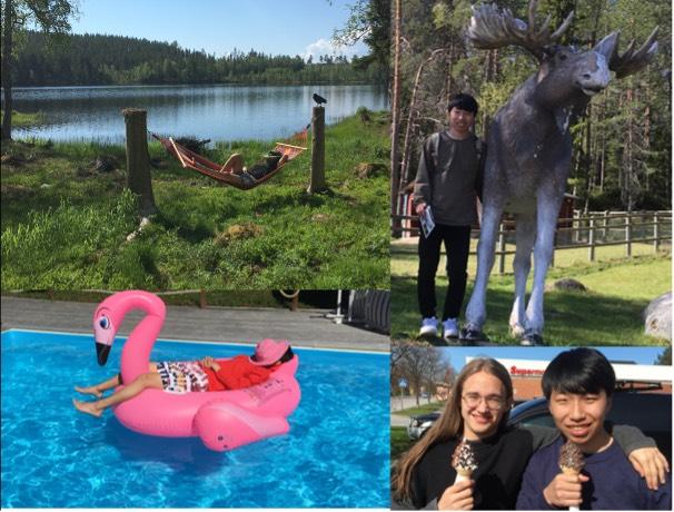 Kazuto vilar i hängmattan i sommarstugan, besöker älgar och andra nordiska djur på ZOO, badar i poolen och äter mjukglass med hans svenska bror Elliot.
