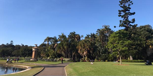 Puisto Sydneyssä