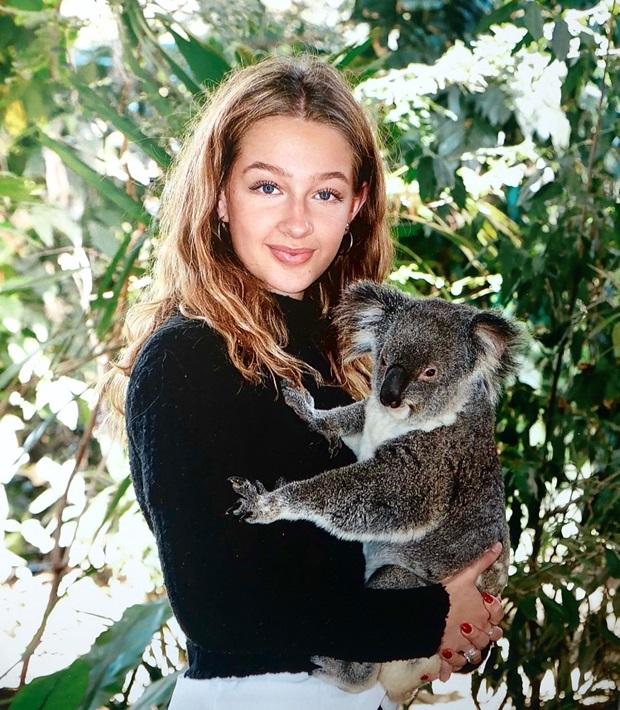 Vaihtari ja koala
