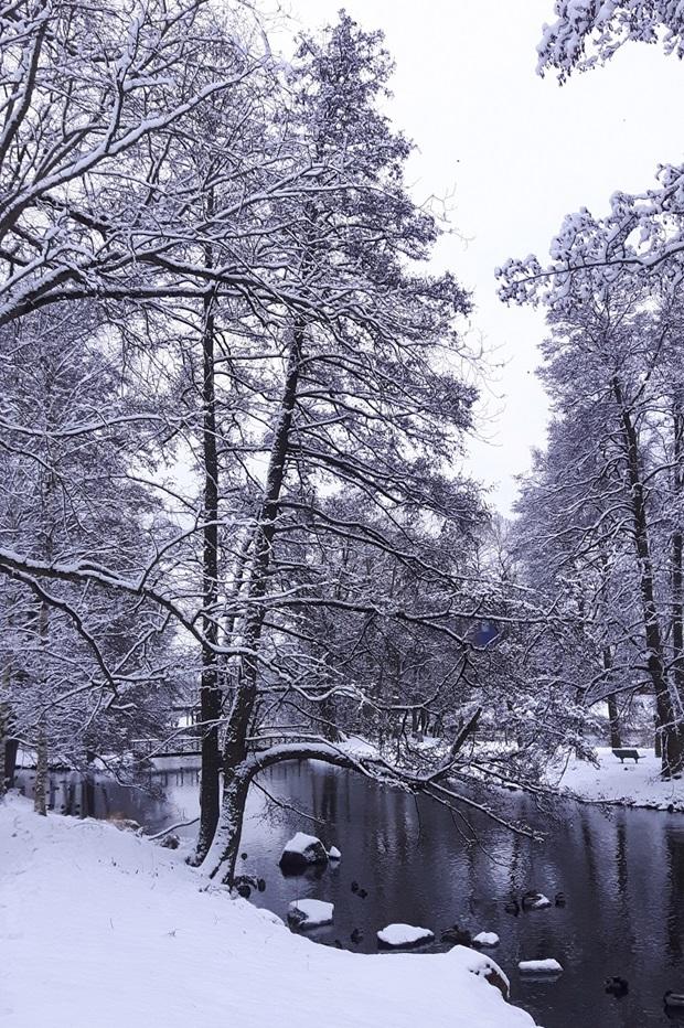 Talvi Gävlessä