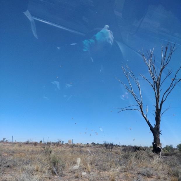 Australian luontoa