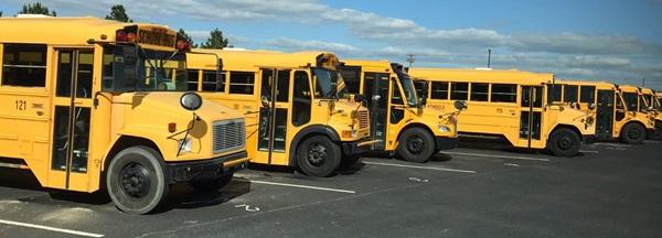 Bus gialli allineati fuori dalla scuola americana