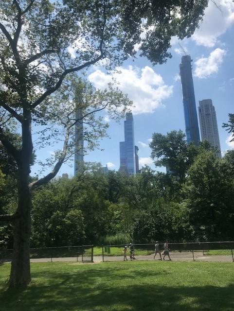 grønn park