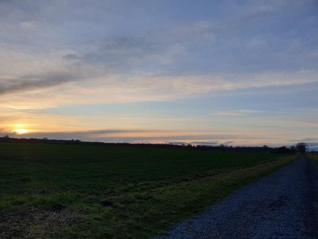 Bilde av en solnedgang over et jorde