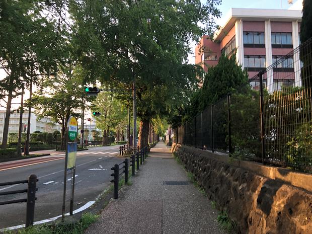 Vägen till min japanska skola