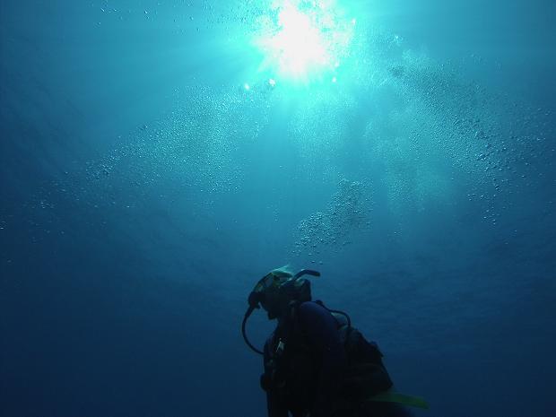 Dykare simmar mot ytan