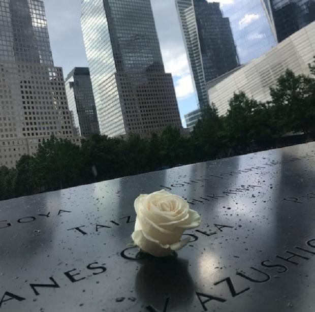Vit ros ground zero