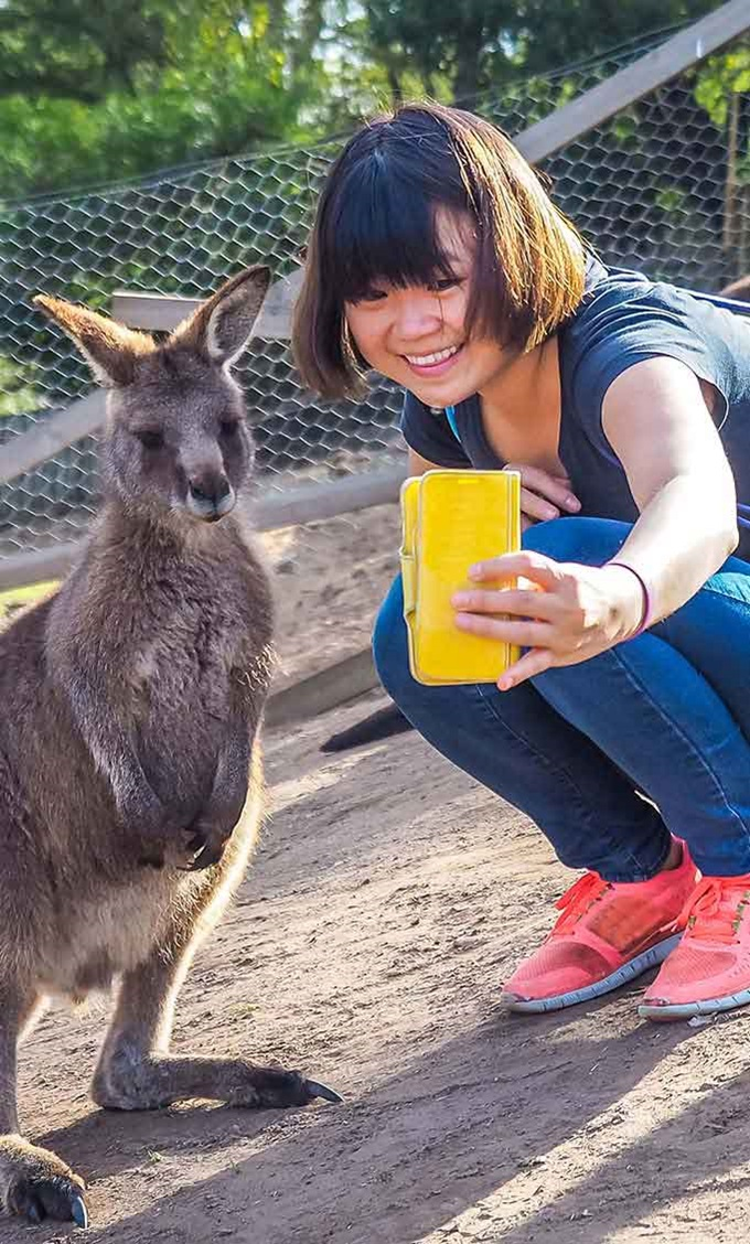 Student taking a sefie with a kangaroo