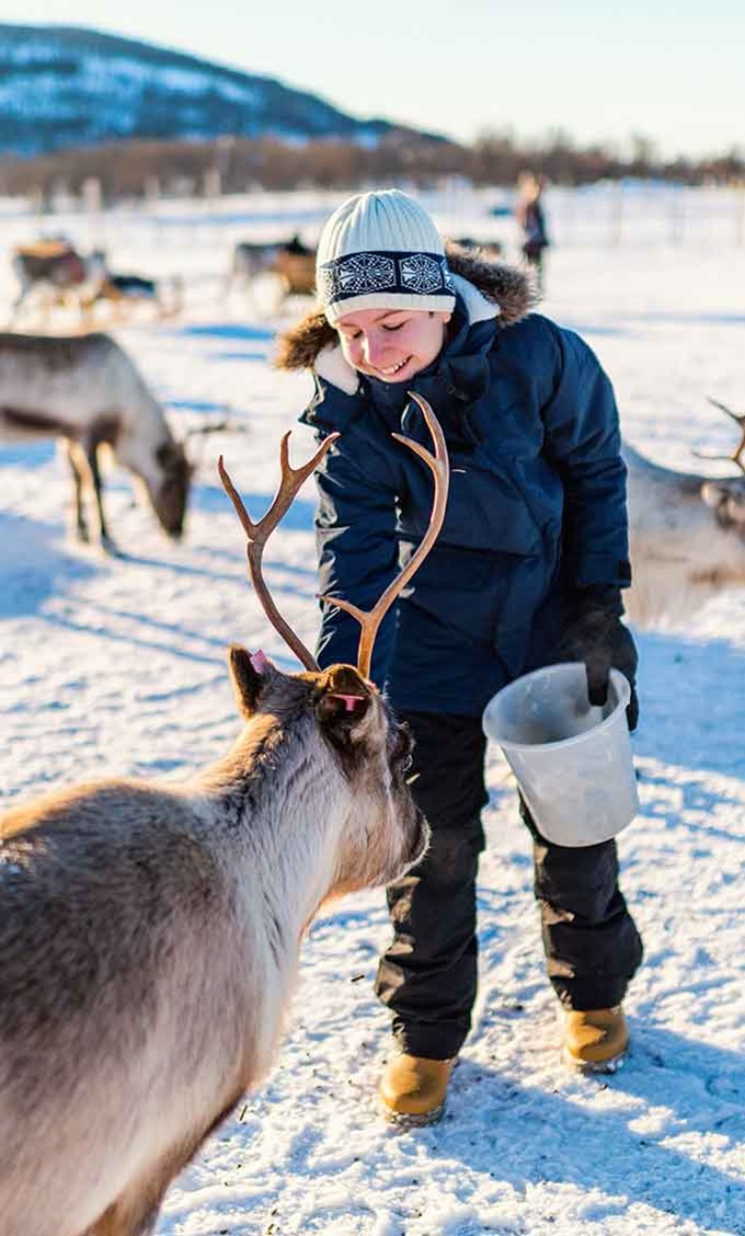 Feeding reindeer in Norway!