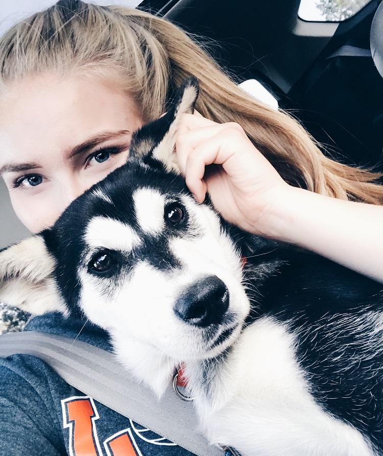 Isäntäperheen koira