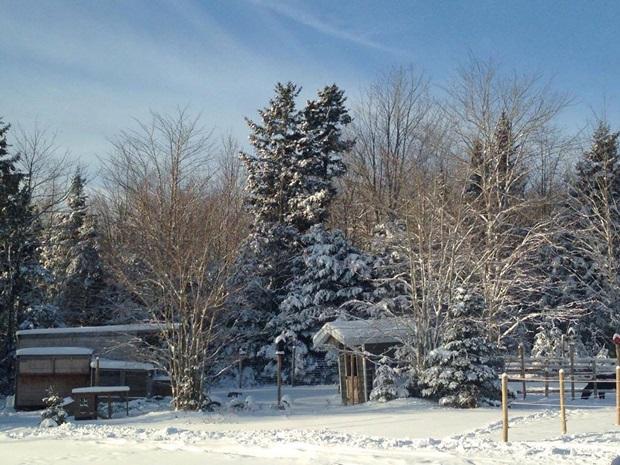 Snø og julestemning i Canada