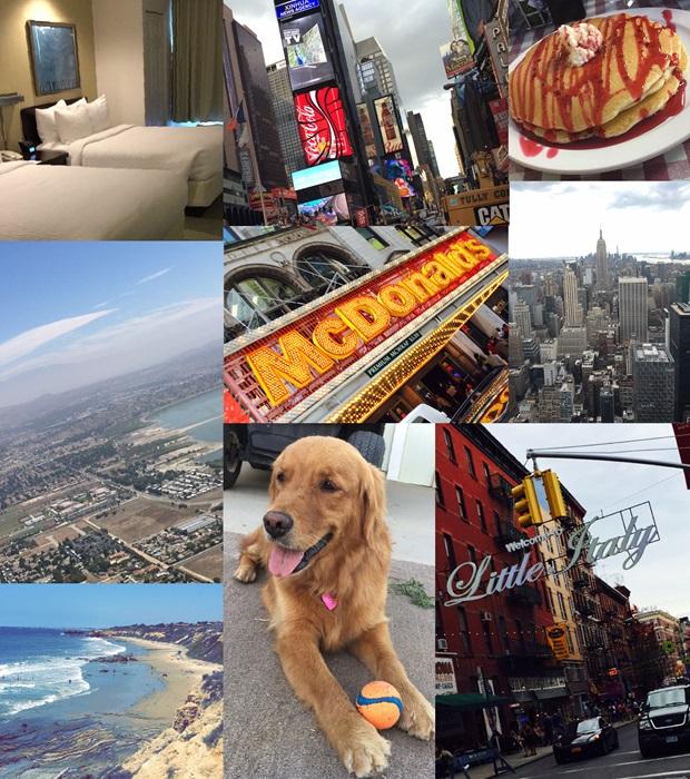 Collage av Petters første uker i USA