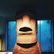 museum new york utveksling