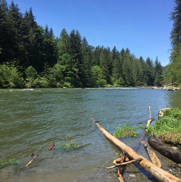 Vacker flod