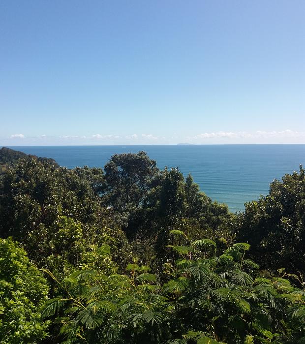 Vacker utsikt över skog och hav