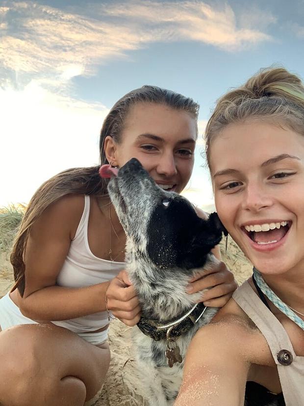 Strandhäng med hund