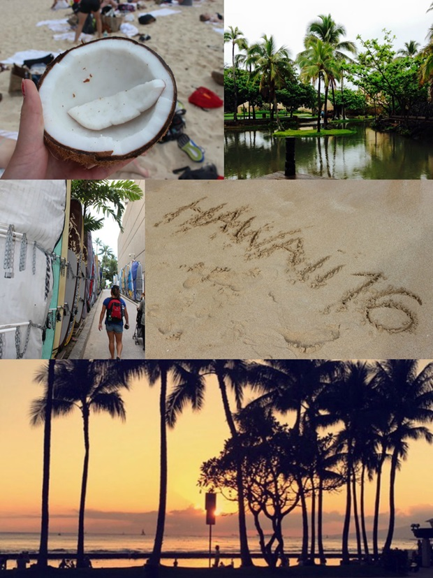 utbytesstudent hawaii resa