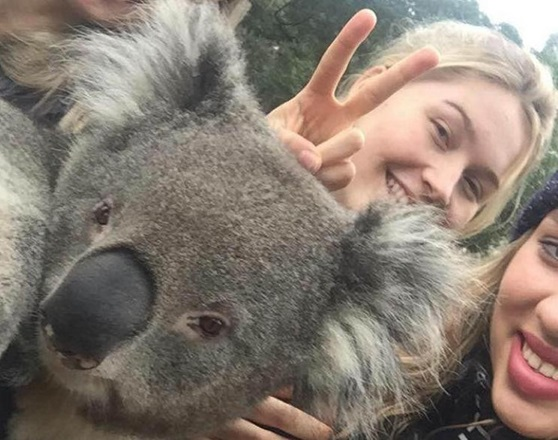 Elwood-College-Students-With-Koala