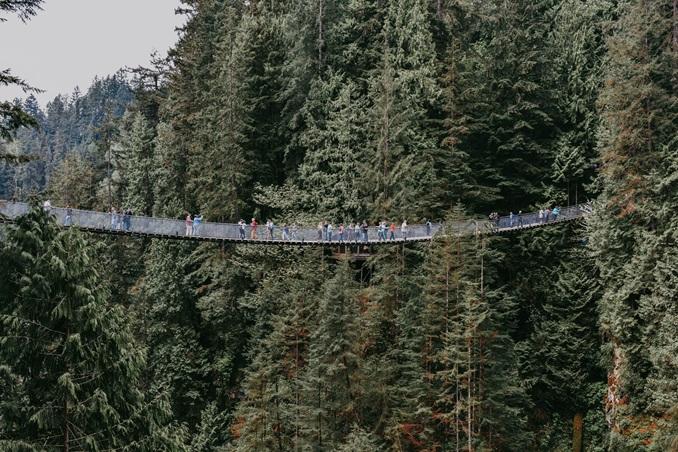 Rockridge-Secondary-West-Vancouver-BC-Canada-2020