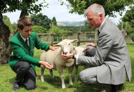 Teacher and student with a sheep at Stover School