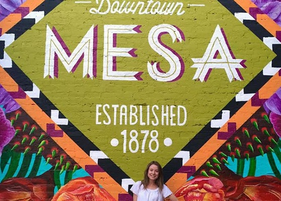 MesaPublicSchools-Public-AZ-Logo-Gallery-2021