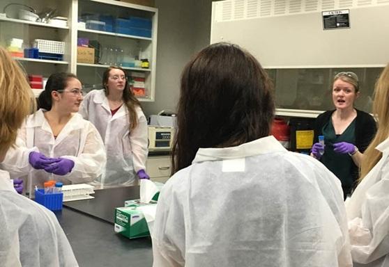Beverly High School Massachusetts USA Chemistry Gallery 2019