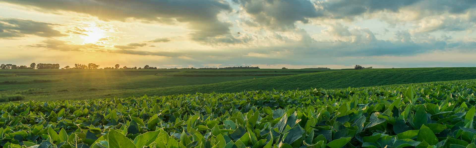 ScotusCentralCatholic-PrivateDay-Nebraska-USA-StateOverview