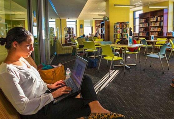 LemanManhattan-highchool-NY-Library-GAllery