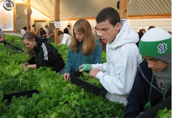 Montpelier High School VT Gardening Gallery